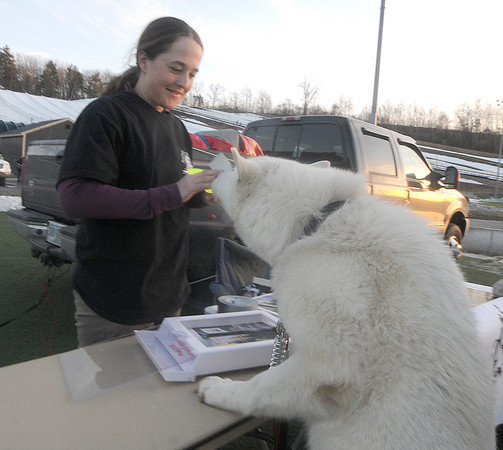 Amesbury: Karen Tolin of the Muddy Paw Sled Dog Kennel in Jefferson NH pets one of her dogs Gandalf at the Extreme Adventure Expo at the Amesbury Sports Park Friday night. Jim Vaiknoras/Staff photo
