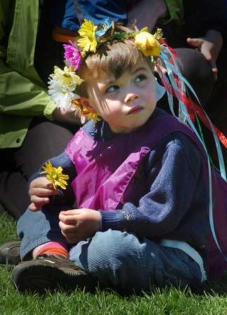 Newburyport: Grayson Driscoll, 4, of West Newbury plucks petals off a flower at Newburyport's Waterfront Park on Monday morning. Students from the Newburyport and Inn Street Montesorri Schools held their annual May Day celebration parading through the downtown then gathering to sing songs at the park. Bryan Eaton/Staff Photo