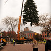Newburyport: This year's Christmas tree is lowered into Market Square yesterday late morning. After a longer than usual search, the Chamber of Commerce got the tree from a donor on Crow Lane. Bryan Eaton/Staff Photo