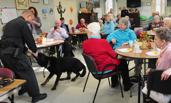 Amesbury: Amesbury K9 officer Thomas Nichols gives his dog Kaybar his rolled towel reward for finding heroine hidden at the Amesbury Senior Center. Once a month members of the public safety community have coffee with the seniors. Bryan Eaton/Staff Photo