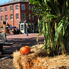 Newburyport: Newburyport's Market Square is decked out with autumn decorations for this weekend's Fall Festival. Bryan Eaton/Staff Photo