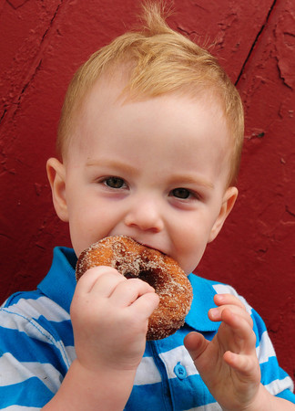 Amesbury: Caleb Clinton-D'Agnese, 21 months of Londonderry, N.H. bites into a warm cider donut at Cider Hill Farm in Amesbury. Bryan Eaton/Staff Photo