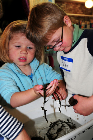 Newburyport: Sophia Hanrahan, 3, feels seaweed while Bailey Richard, 4, checks out a sea urchin in a touch tank at the Newburyport Montessori School on Thursday. Staff from the Joppa Flats Education Center were there teaching the children about marine life. Bryan Eaton/Staff Photo