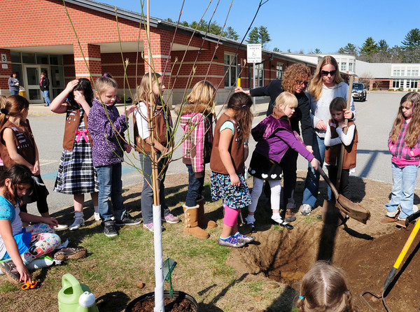 Salisbury: Salisbury Brownie Troop 65121 take turns digging out a pit to plant a dogwood tree on Wednesday afternoon. The girls were putting the tree in at Salisbury Elementary School for a community service project. Bryan Eaton/Staff Photo