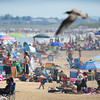 Salisbury: Salisbury Beach was a busy place yesterday in a photo looking south from the deck of the Surfside 5. The weather looks warm and dry well into the weekend with no rain expected until possibly Tuesday.  Bryan Eaton/Staff Photo