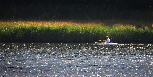 Newburyport: A kayaker, one of a half dozen, move along the Merrimack River, next to Ferry Landing Farm, heading down river Wednesday afternoon. Photo was taken from parking lot of Lowell's Boat Shop. Bryan Eaton/Staff Photo