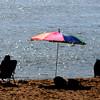 Newbury: Morning sunshine reflects off the water on Plum Island early Saturday. jim Vaiknoras/staff photo