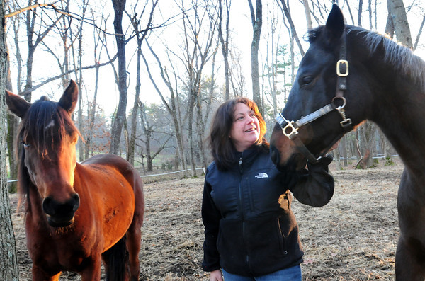 West Newbury: Mary Martin with Allie, left, and Gigs at her West Newbury horse farm has set up an initative to collect food for people who are having trouble feeding their horses. Bryan Eaton/Staff Photo