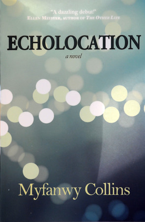 Newbury: Author Myfanwy Collins releases her first novel Echolocation. JIm Vaiknoras/staff photo