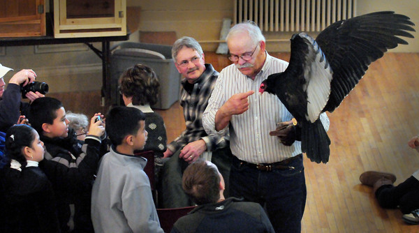 Newburyport: Tom Ricardi of the Massachusetts Bird of Prey Rehabilitation Facility shows off a turkey vulture upstairs at Newburyport City Hall during the Eagle Festival on Saturday. Bryan Eaton/Staff Photo