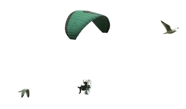 Newburyport: Patrick Tarmey joins the seagulls flying his powered parachute over the Merrimack River. Bryan Eaton/Staff Photo
