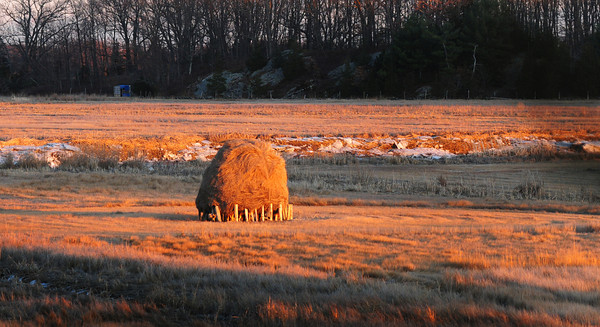 Newbury: Late afternoon sun casts a warm glow over one of the haystacks on Essex County Sportsmen's property on Route One in Newbury on Wednesday afternoon, though the weather was anything but warm. Bryan Eaton/Staff Photo