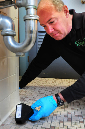 Newburyport: Dave Herbert of Essex Pest Control puts mouse traps under sinks, among other spots around homes, where mice can squeeze through gaps around pipes. Bryan Eaton/Staff Photo