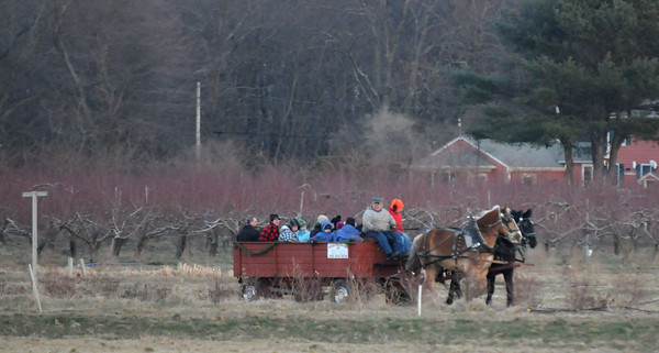 Newbury: Families bundle up as the enjoy a hay ride  at the Annual Town of Newbury Christmas Tree Bon Fire at the SpencerPierce Little Farm Saturday night. Jim Vaiknoras/staff photo