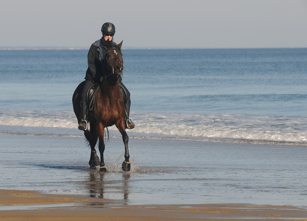 "Salisbury: Natalia Gorawski of Walpole NH rides Maddy along the surf line on Salisbury Beach Sunday. Gorowski said"" It's a blessing to have such a beautiful place to ride"". Jim Vaiknoras/staff photo"