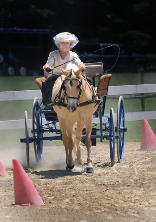 Amesbury: Kat Trembly puts her blue wicker carriage through it's paces at the Amesbury Carriage at the Bob-Lyn Stables in Amesbury Festival Sunday. Jim Vaiknoras/staff photo