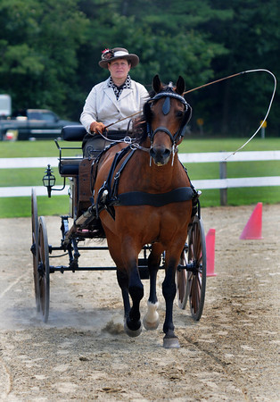 "Amesbury: Linda Wilking driving ""Spinnaker"" in her Natural Wood Phaeton Carriage at the Amesbury Carriage Festival at the Bob-Lyn Stables in Amesbury Sunday. Jim Vaiknoras/staff photo"