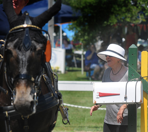 Amesbury: Organizer Susan Kosojudges one of the events at the Amesbury Carriage Festival at the Bob-Lyn Stables in Amesbury Sunday. Jim Vaiknoras/staff photo