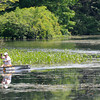 Amesbury: Racers make the turn at the South Hampton end of Lake Gardner at the fourth annual Lake Gardner Classic 5K Canoe and Kayak Race, sponsored by Lake Gardner Improvement Association Saturday. Jim Vaiknoras/staff photo