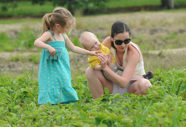 Amesbury: Kristen Jackman of Newburyport holds her son Parker, 1, as she hand a strawberry she just picked to her daughter Madeline, 3, at the Cider Hill Farm in Amesbury. JIm vaiknoras/staff photo