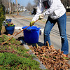 Newbury: Karen Wakefield rakes out leaves and planted a few flowers on the front of the First Parish Church of Newbury on Tuesday. She's a church member that volunteers to help out with the upkeep of the grounds. Bryan Eaton/Staff Photo