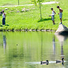 Amesbury: Two ducks glide by as a group fishes in the small pond at Amesbury Park. Jim Vaiknoras/staff photo