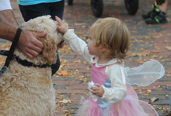 Newburyport: Kaliegh Bligh says hello to her new friend Fenway while they both enjoy Retail Downtown Trick or Treat in Market Square in Newburyport Friday night. Jim Vaiknoras/staff photo
