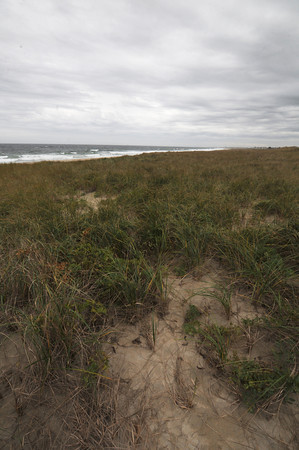 Seabrook : Section of Seabrook Beach looking south from Hooksett Street, seafence will be put in the area to help protect plovers. Jim Vaiknoras/staff photo