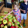 Amesbury: Cady Seaton, 3, and her brother David, 7, of West Newbury choose apples at Cider Hill Farm in Amesbury on Thursday. Apples, like other produce, are early this year. Bryan Eaton/Staff Photo