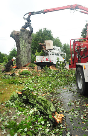 Salisbury: A huge maple tree, which showed evidence of rotting, toppled yesterday morning just north of Pettengill Farm on Ferry Road in Salisbury from the wind and rain that swept through. The road was closed for close to three hours after it blew down around 6:30pm. Bryan Eaton/Staff Photo