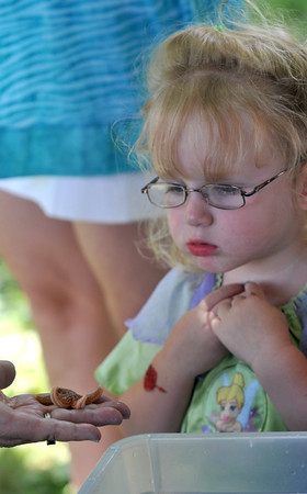 Newburyport: Amelia Pare, 2, doesn't know what to make of a seastar on display from the Joppa Flats education Center at Family Day at Maudslay Saturday. Jim Vaiknoras/staff photo
