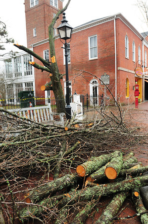 Newburyport: Branches from a tree north of the Firehouse Center in downtown Newburyport blew down early yesterday morning during the storm that swept through the area. Bryan Eaton/Staff Photo