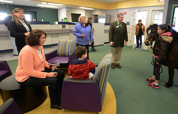 Groveland: Isobell Bounsy presents Boo to costumers and staff at the TD Bank in Groveland Friday. Boo was there to accept a donation to New England Equine Rescue North. Jim Vaiknoras/staff photo