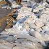 Newbury: Sandbags at Plum Island center. Jim Vaiknoras/staff photo