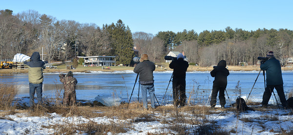 Amesbury: A group of wildlife photographers wait for eagles on Deer Island in Amesbury. With ice filling the river a number of the raptors have been in the area. Jim Vaiknoras/staff photo