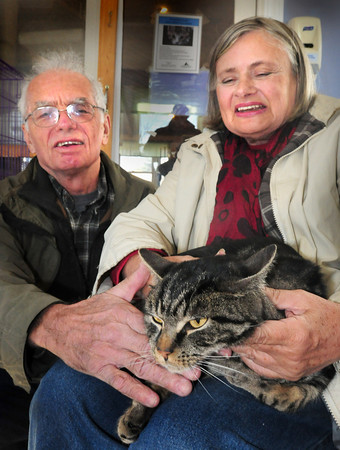 Salisbury: David and Lunn Ghesquiere of Manhattan were reunited with their cat Gus at the Merrimack Valley Feline Rescue in Salisbury yesterday. The cat had jumped out of their car on the rest area on Interstate 495 in Merrimac in August returning from a trip to Nova Scotia. Bryan Eaton/Staff Photo