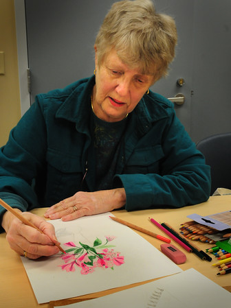 Amesbury: Maureen Lynch of Amesbury works on a colored drawing of Peruvian lillies at the Amesbury Council on Aging's Senior Center. She was one of several taking lessons from Cara Smoley who teaches there on Monday mornings. Bryan Eaton/Staff Photo