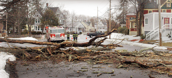 Amesbury: Sparhawk Street was closed for about an hour yesterday morning around 10:30 a.m. after a large locust tree crashed across the street taking down power wires connected to a Sparhawk Street house. An Amesbury firefighter said it appears the old tree was rotted through and that yesterday's high winds was enough to seal its fate. Police blocked off access to the street, also known as Route 150, which connects to Main Street near the downtown area. No one was injured. Dave Rogers/Staff Photo