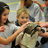 Newburyport: Shawn Queenan of Curious Creatures shows of a South American cherryhead tortoise to youngsters in Mrs. Murray's Nursery School in Newburyport on Friday morning. Bryan Eaton/Staff Photo