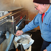 Byfield: Bernard Field of Field Family Maple Syrup in Byfield drains some maple syrup from the evaporator in his Byfield shed. A good year for maple syrup, Field is already over 113 gallons this year compared to last year's total of 35. Bryan Eaton/Staff Photo
