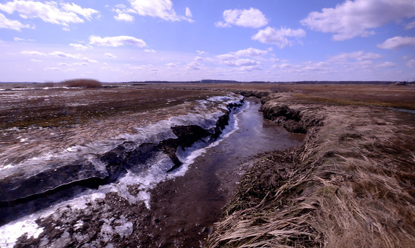 Newbury: Although spring is just days away, the salt marsh along the Plum Island Turnpike is spotted with ice. Jim Vaiknoras/staff photo