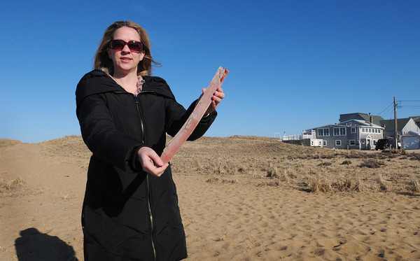 Newburyport: Newburyport city councilor Allison Heartquist holds a piece of snow fencing which officials are considering using similar type slats placed around in the dunes at Plum Island to catch drifting sand. Bryan Eaton/Staff Photo