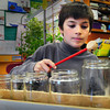 Newbury: Joey Powis, 9, raided the recycle bin of glass jars to create a xylophone at Newbury Elementary School. Third-graders are learning about sound and the students in Brittany Williams' class used recycled materials to create their instruments. Bryan Eaton/Staff Photo