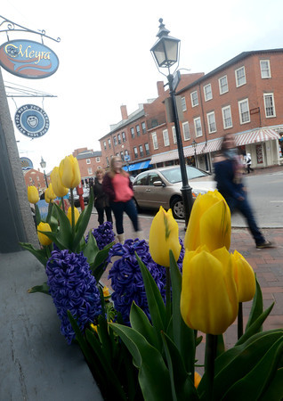 Newburyport: Shoppers in jackets and sweaters walk by bright spring flowers in window boxes along State Street in Newburyport Sunday. Jim Vaiknoras/staff photo