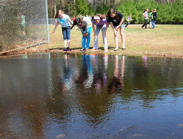 BRYAN EATON/Staff Photo. Students got great weather for recess on Monday as the temperature skirted with the 80's. Students check for tadpoles in some wetland at Salisbury Elementary School which has expanded from the recent rains.