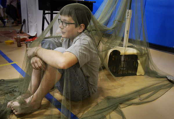 "BRYAN EATON/Staff Photo. Sam Warren, 12, is covered in netting to prevent being bitten by moquitoes while playing one of the 'Lost Boys of Sudan"" at the Pine Grove School. Sixth-graders have studied African culture and presented several displays showcasing such."