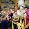 BRYAN EATON/Staff Photo. Lynda Kuhne, Director of Rehabilitation at the Anna Jaques Hospital with a model skeleton talks about how injuries to humans can be repaired or mended. The Bresnahan School in Newburyport was holding a STEM (Science, Technology, Engineering and Math) Expo to show how science affects their lives.