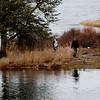 JIM VAIKNORAS/Staff photo  Two people explore Deer Island in Amesbury Saturday afternoon at high tide.