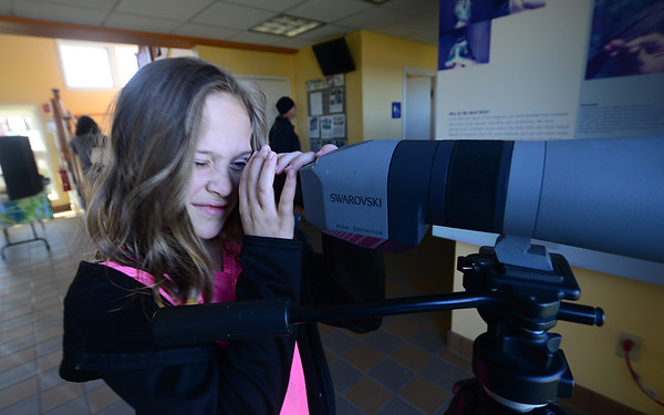 JIM VAIKNORAS/Staff photo Sarah Starnes, 8, of Brookline NH checks one of the spotting scopes at the Joppa Flats Education Center at the 100th Day Celebration at the center Saturday. The event marked the 100th annaversary of Mass Audubon's wildlike sanctuaries.