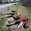 """BRYAN EATON/Staff Photo. The sculpture of a horse titled """"Clyde"""" along the Clipper City Rail Trail near Haley's Ice Cream has toppled. It's not known if it was vandalism or from a strong wind."""